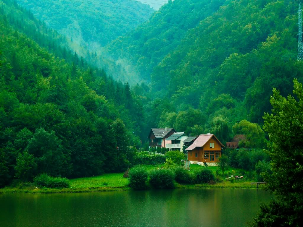 landscape-forest-lake-romania