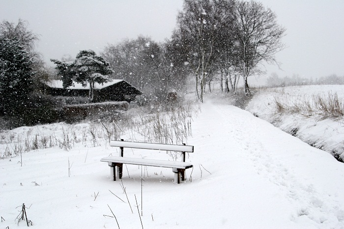bench   under the snow  in denmark, path